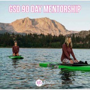 GSD 90 day mentorship